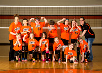 WWVA Spring Volleyball